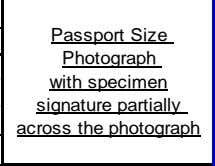 Passport Size Photograph with specimen signature partially across the photograph