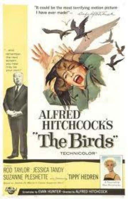 Cutting Edge Film Review The Birds Figure 1 The Birds is a film directed by Alfred