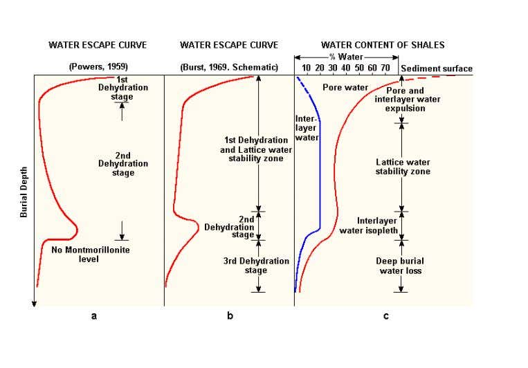 the formation of Kaolinite. Clay dehydration illustration Figure 2-14. Schematic dehydration of clays during burial.