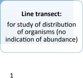 Line transect: for study of distribu=on of organisms (no indica=on of abundance) 1