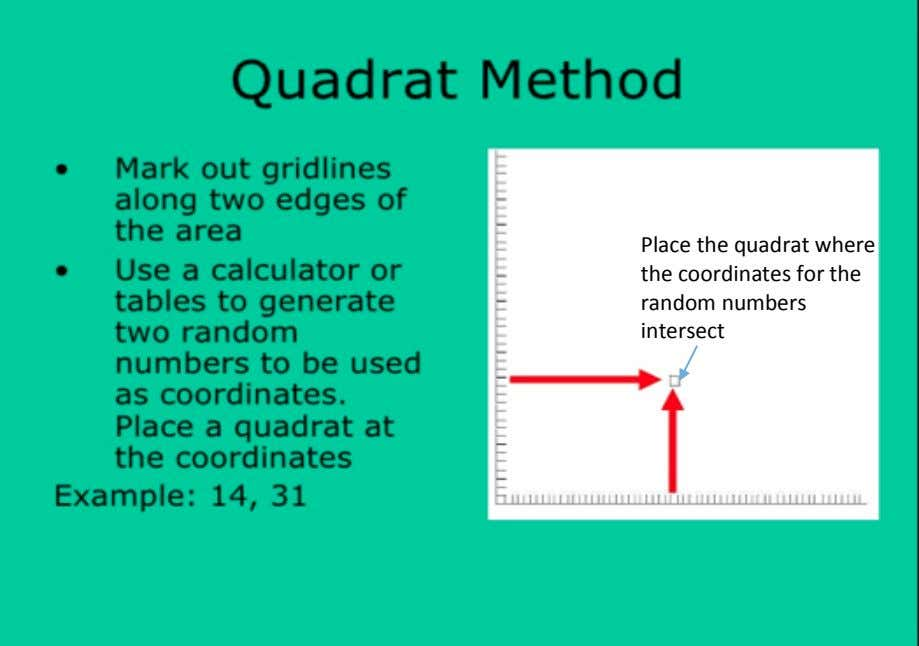 Place the quadrat where the coordinates for the random numbers intersect 3