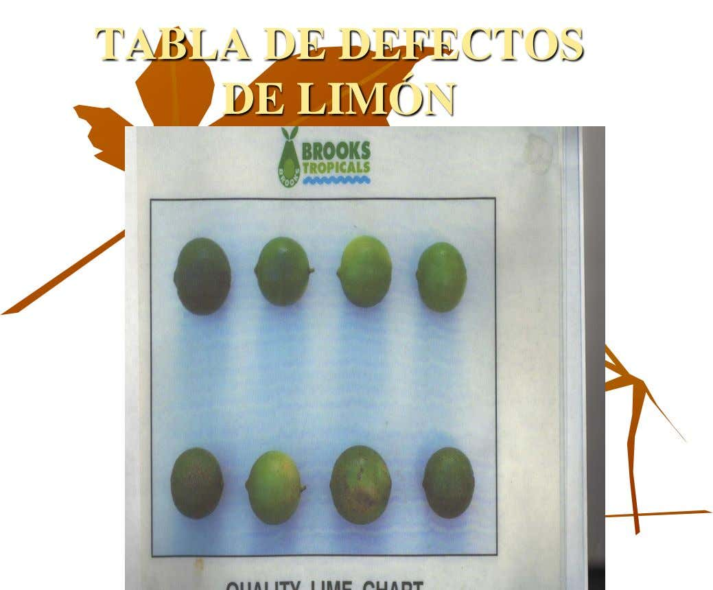 TABLA DE DEFECTOS DE LIMÓN