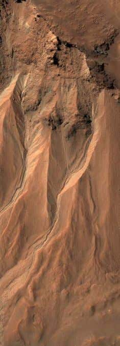 on Mars lasts only one-half hour longer than a day on Earth Scientists are studying the
