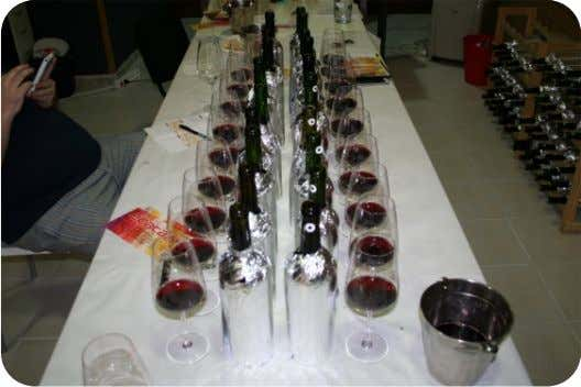 room temperature and the wine temperature were optimal. Schott Zwiesell Taste nº 1 and Riedel were