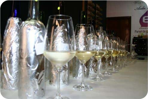 THE WINES; RATINGS AND THE TASTING PROCESS: This guide has been created using the ratings and