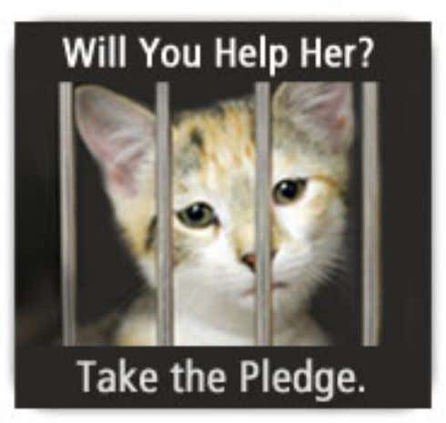 also read our Ten Ways You Can Help Fight Puppy Mills . © 2010 ASPCA. All