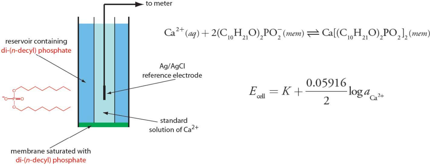 Potentiometric Methods: Liquid-Based Selective Electrodes First L-ISE selective to Ca 2 + develo p ed b