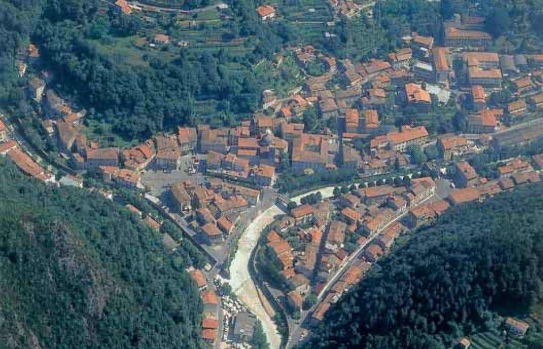 and cultural events,in addition to a well-equipped Museum of Work and Popular Traditions. Seravezza, aerial view