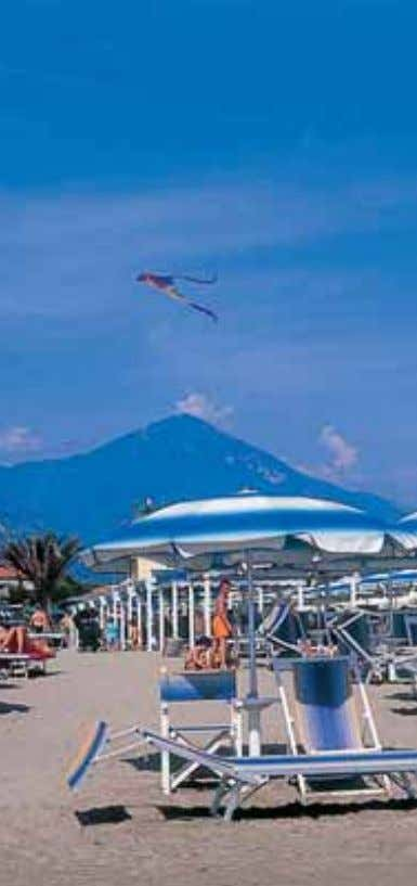 Marina di Pietrasanta, the beach Viareggio, the beach fering a wide variety of habitats, from the