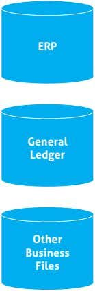 ERP General Ledger Other Business Files