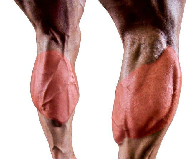 activity that requires you to move your leg or keep your leg vertical. THE CLASSIC PHYSIQUE