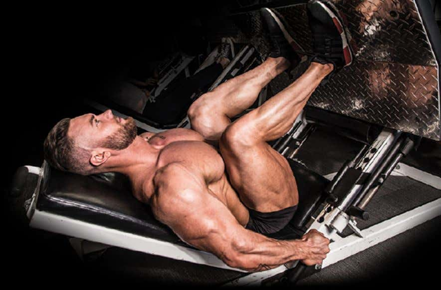 reps, drops sets, rest-pause sets, etc. to get the most out of your legs. THE CLASSIC