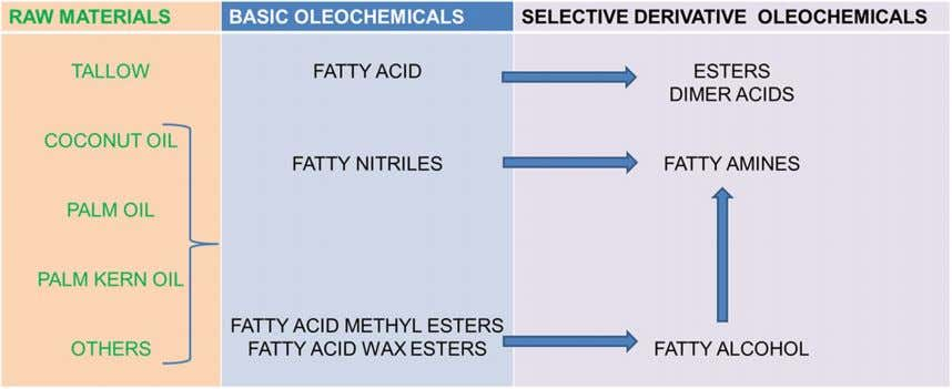 J Am Oil Chem Soc Fig. 1 Schematic of oleochemical process chemistry Although the fatty