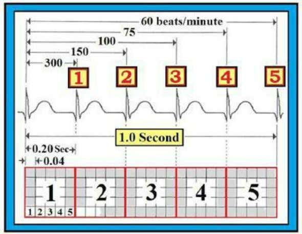 5 X 0.04 second = 0.20 second ( = 1/5th of a second ) . Figure