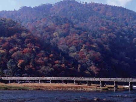 trees requires the mayor's permission in advance. Togetsu-kyo Bridge, Arashiyama 51 The landscape of Kyoto