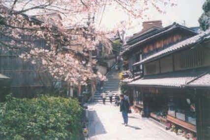 trees and bamboos, and other changes in these areas. Such Sanneizaka District Gion-Shimbashi District 65 The