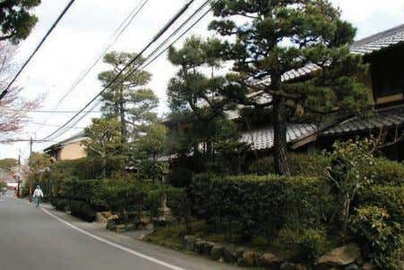 of natural landscape (Kinugasa) 47 The landscape of Kyoto Maintenance of scenic landscape (Daikakuji Temple)