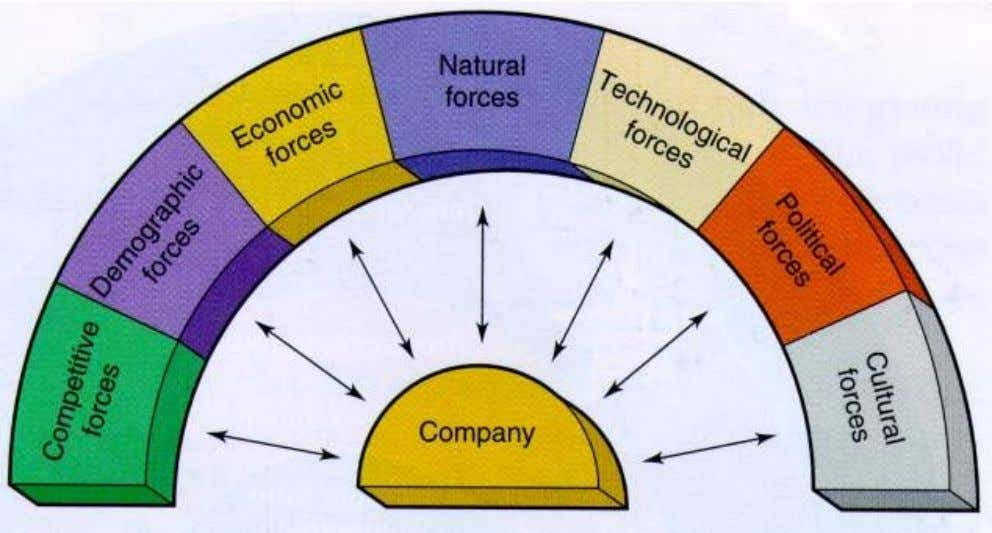 Major Forces in the Company's Macroenvironment 3