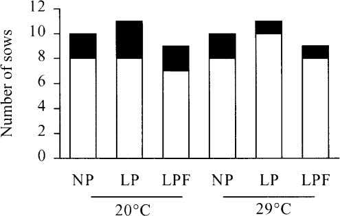 1246 Renaudeau et al. Figure 2 . Effect of ambient temperature and diet on number of