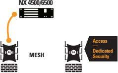 NX 4500/6500 Access — Dedicated MESH Security
