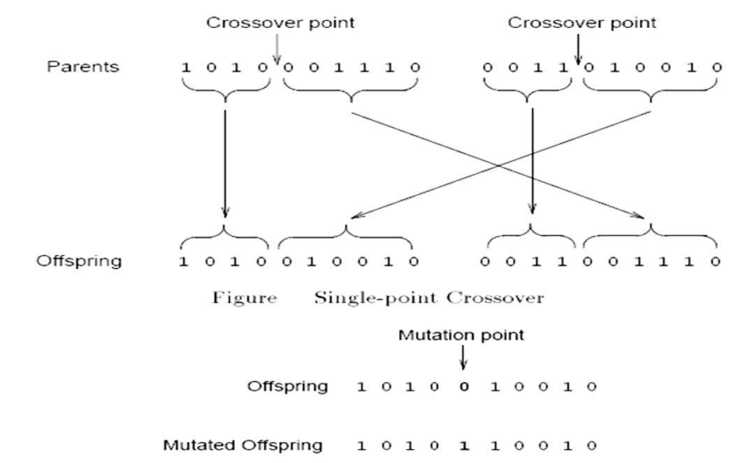 Example of Crossover & Mutation 11
