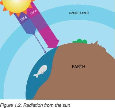 OZONE LAYER EARTH UV-A UV-B Figure 1.2. Radiation from the sun