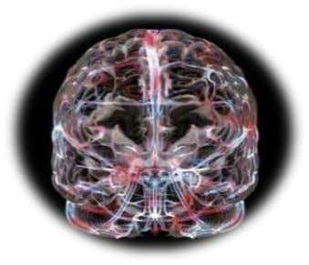 team toughness. Neural Plasticity: Training your Mind By far the greatest advantage of NeuroTracker is the