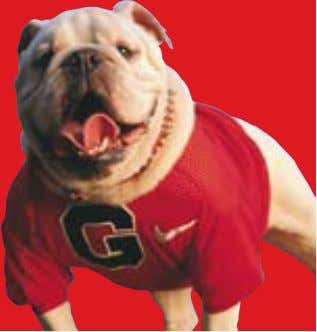 "Uga"" 1966-1972 Two S.E.C. Championships Five Bowl Games UGA V ""Defender of His Turf"" ""Uga IV's"