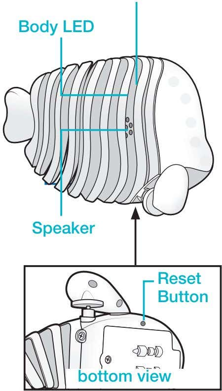 Body LED Speaker Reset Button bottom view