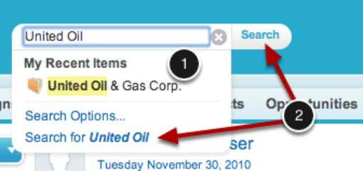 search your Salesforce data by entering a search term. As you type, Salesforce will display recent