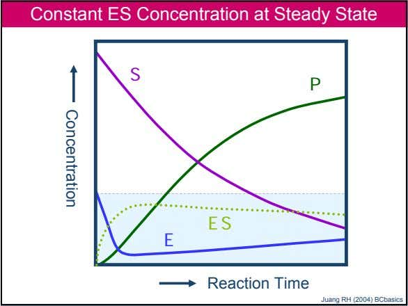 Concentration Constant ES Concentration at Steady State S P ES E Reaction Time 48 Company