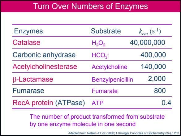 Turn Over Numbers of Enzymes Enzymes Substrate k cat (s -1 ) Catalase 40,000,000 H