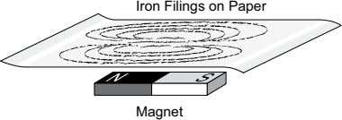 Iron Filings on Paper Magnet