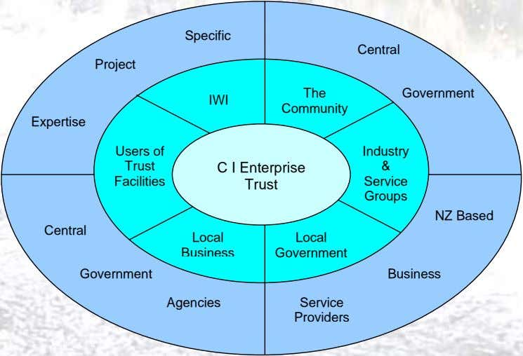 Specific Central Project The Government IWI Community Expertise Users of Industry Trust C I Enterprise