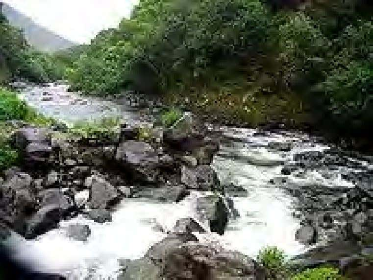 A rocky stream in Hawaii. Streams A stream is a flowing body of water with