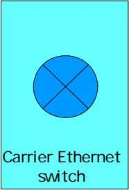Carrier Ethernet switch