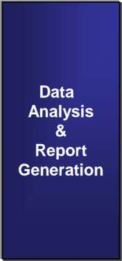 Data Analysis & Report Generation