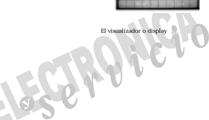 El visualizador o display