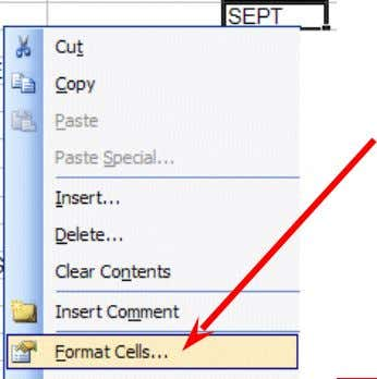 ). You'll notice that SEPT is now centered in cell C3. Here is another way to