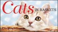 £19.99 Hardback sEPTEMBER 2017 PUBLiCATiOn Cats in Baskets KAt ScrAtchiNg There are few things cuter in