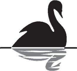 value which would be $300-325 billion. Potential Black Swans • The U.S. loses its AAA credit