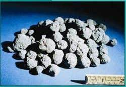 Blended, and Other Hydraulic Cements Clinker Gypsum Fig. 2-9. Portland cement clinker is formed by burning