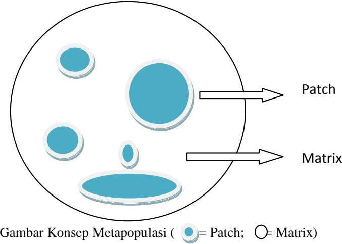 Patch Matrix Gambar Konsep Metapopulasi ( = Patch; = Matrix)