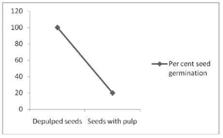 in the vicinity of parent tree that ensure better survival. Fig. 2. Percent germination of depulp