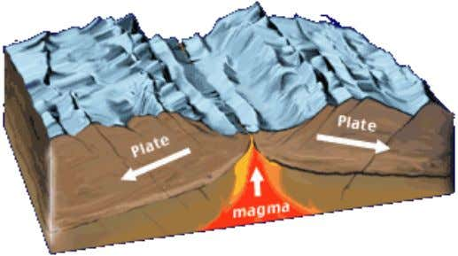 Seafloor Features: Deep Ocean  Plate Tectonic Boundaries Ridges or Rises Transform Faults, Fracture Zones