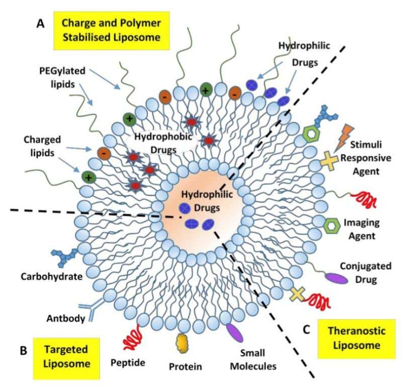 Liposome co-delivery system for tumor combination therapy Liposomes Malignant tumors are the number one killer that