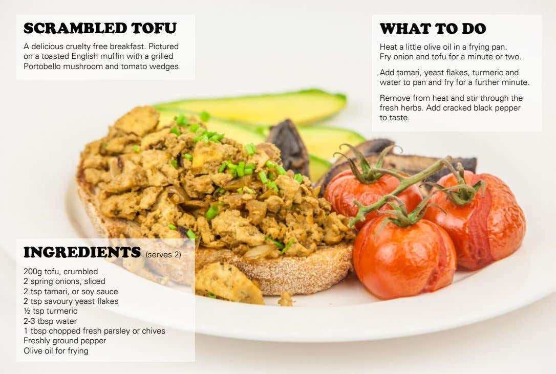 SCRAMBLED TOFU WHAT TO DO A delicious cruelty free breakfast. Pictured on a toasted English
