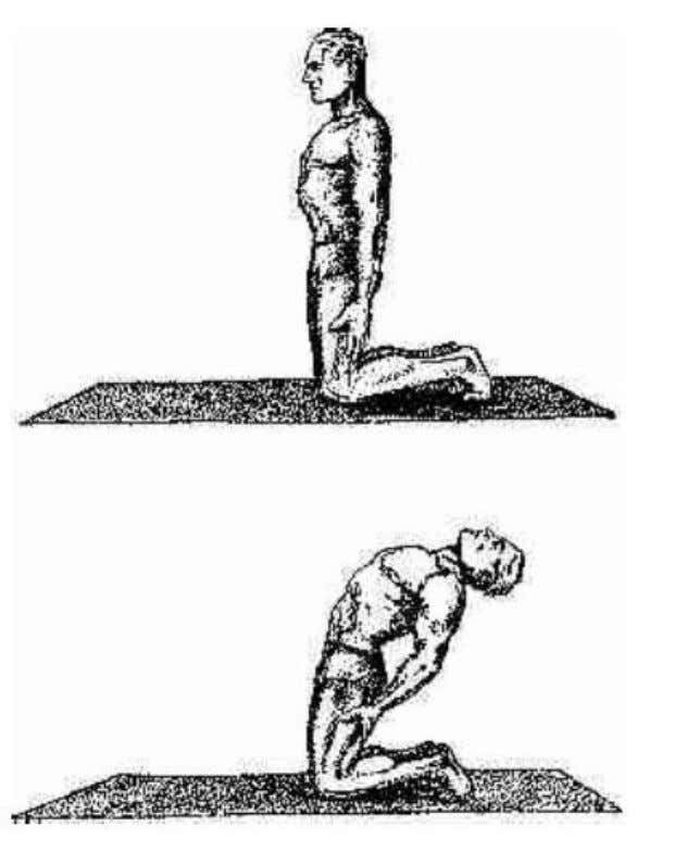 you return to an erect position. Begin by doing this exercise only three times and then