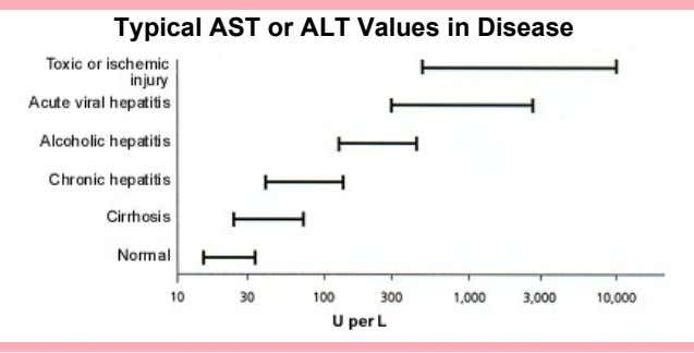 Typical AST or ALT Values in Disease