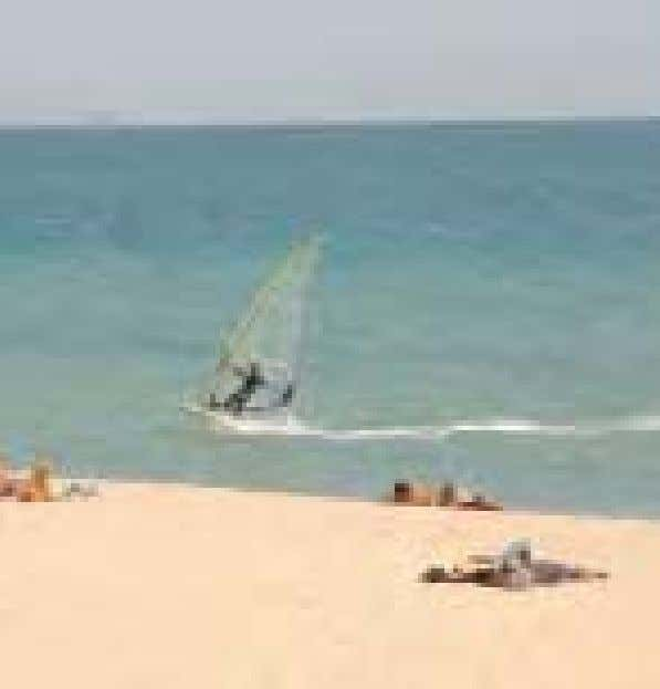 to rent all the equipment you need for a surf or sail from the Port Ol